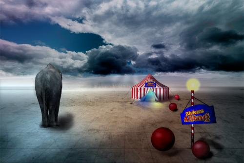 Zirkus-Alltag